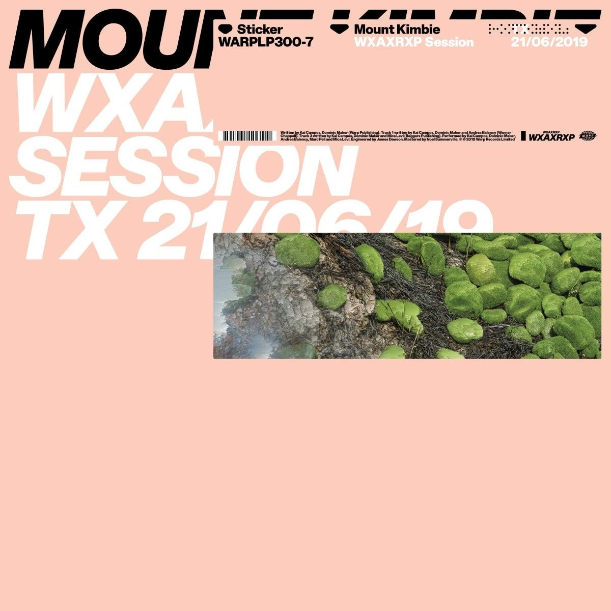 Mount Kimbie - Wxaxrxp Session Vinyl LP
