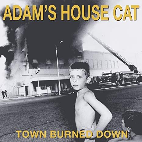 Adam's House Cat - Town Burned Down Vinyl LP