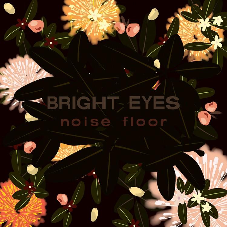 Bright Eyes - Noise Floor : Rarities 1998-2005 2XLP