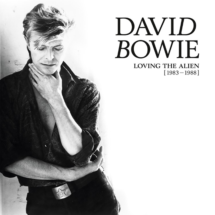 David Bowie - Loving The Alien (1983-1988) Vinyl Boxset