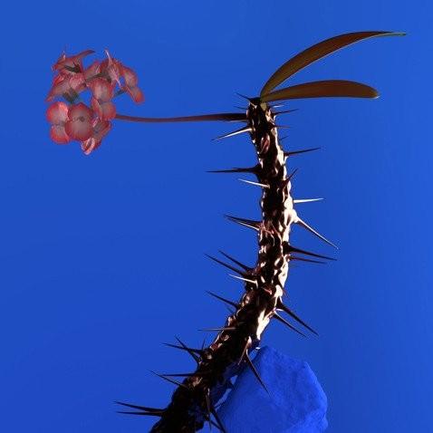 "Flume - Skin Companion EP II 12"" EP"