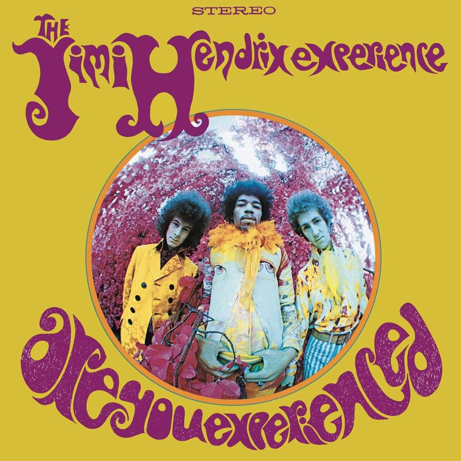 Jimi Hendrix - Are You Experienced LP