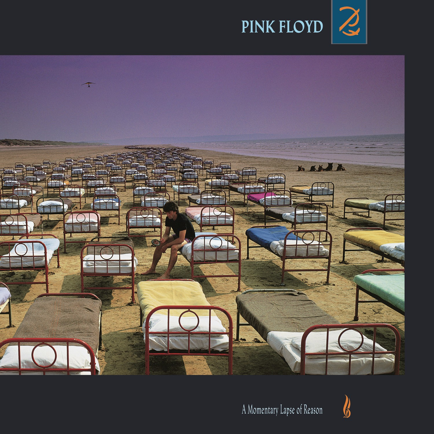 Pink Floyd - A Momentary Lapse Of Reason LP