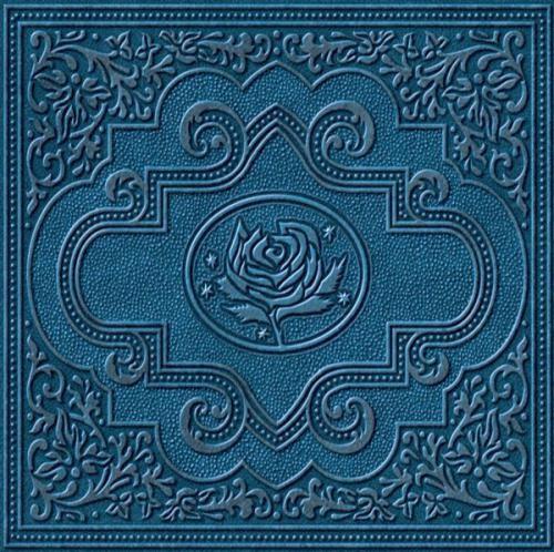 Ryan Adams & The Cardinals - Cold Roses  2XLP