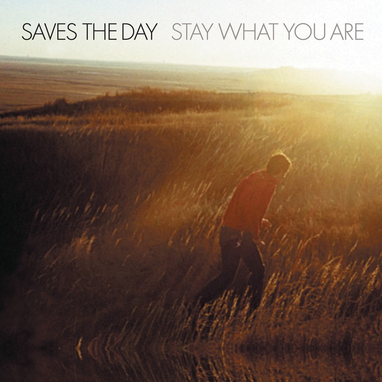 Saves the Day - Stay What You Are LP