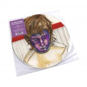 The Front Bottoms - The Front Bottoms (Picture Disc) Vinyl LP