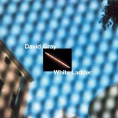 David Gray - White Ladder (2020 Remaster / WHITE) 2XLP