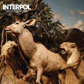 Interpol - Our Love To Admire (Blue) Vinyl LP