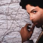 Prince - Musicology 2XLP Vinyl