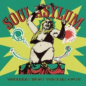 Soul Asylum - While You Were Out Vinyl LP