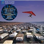 Pink Floyd -  A Momentary Lapse Of Reason (180 Gram)