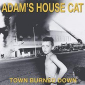 Adam's House Cat - Town Burned Down Vinyl LP
