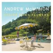 Andrew McMahon in the Wilderness  - Upside Down Flowers Vinyl LP