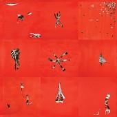 Animal Collective - Hollinndagain Vinyl LP