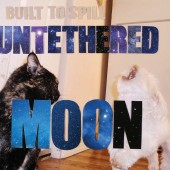 Built To Spill - Untethered Moon LP