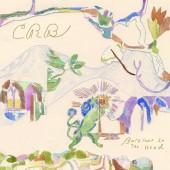 Chris Robinson Brotherhood - Barefoot in the Head LP