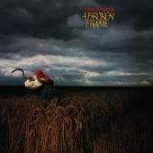 Depeche Mode - A Broken Frame  LP