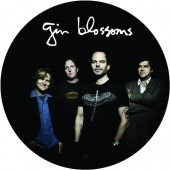Gin Blossoms - Live In Concert (Picture Disc) Vinyl LP