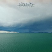 Modest Mouse - The Fruit That Ate Itself LP
