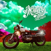 Of Montreal - Lousy with Sylvianbriar LP
