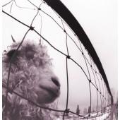 Pearl Jam - Vs. LP