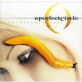 A Perfect Circle - Thirteenth Step 2XLP