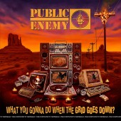 Public Enemy - What You Gonna Do When The Grid Goes Down? Vinyl LP