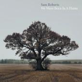 Sam Roberts - We Were Born in a Flame 2XLP