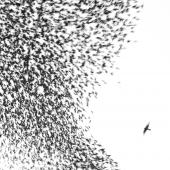 Wilco - Sky Blue Sky 2XLP