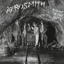 Aerosmith - Night in the Ruts Vinyl LP