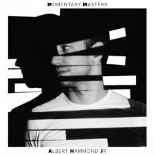 Albert Hammond Jr - Momentary Masters LP