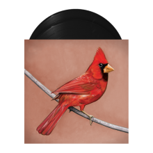 Alexisonfire - Old Crows / Young Cardinals 2XLP Vinyl