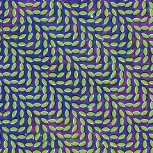 Merriweather Post Pavilion 2XLP
