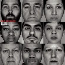 Bad Religion - The Gray Race Vinyl LP