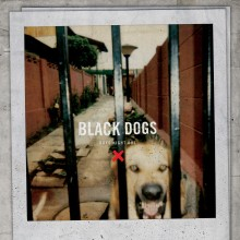 Boys Night Out - Black Dogs 10""