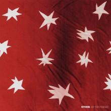 Citizen - As You Please Vinyl LP