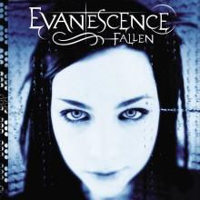 Evanescence - Fallen LP