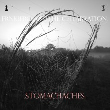frnkiero and the cellabration - Stomachaches LP
