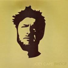Joey Cape - Bridge LP