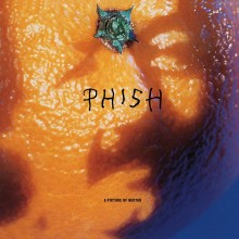 Phish - A Picture of Nectar LP
