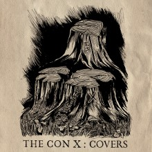 Tegan And Sara - The Con X: Covers Vinyl LP