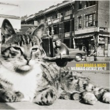 Billy Bragg & Wilco - Mermaid Avenue Vol. II 2XLP